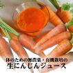 にんじん 無農薬 有機栽培  約20本 (3kg)
