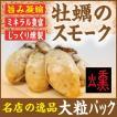 かきのスモーク(牡蠣の燻製)大粒牡蠣使用48g 北海道から