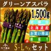 アスパラ グリーン アスパラガス 北海道産 1,500g S-Lサイズ 【2022年度 予約商品】