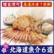 北海道産の魚介6種セット 急速生冷凍で鮮度抜群 毛ガニ・ボタンエビ・南蛮エビ・ホタテ・ほっき貝・しゃこ