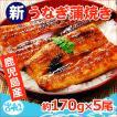 うなぎ 蒲焼 国産 送料無料 特大 約220g×5尾