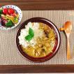 カレー皿 パスタ皿 食器 リム9.0プレート  パスタボウル カレーボウル 業務用 白い食器 黒い食器 カフェ食器 おしゃれ シンプル 洋食器 和食器
