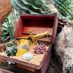 伊豆シャボテン本舗 観葉植物 サボテン 多肉植物 寄せ植え 宝箱ケース入り 海賊グッズ付き 植木鉢
