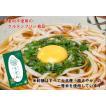 グルテンフリー米粉うどん(2食入り)