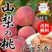 ギフト フルーツ もも 桃 モモ 黄金桃 1.5Kg