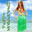 Patymo ハワイアンフラダンス5点セット (グリーン) 衣装 コスプレ ハロウィン 仮装 大人 コスチューム