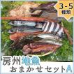 地魚鮮魚おまかせセットA(3〜5種) ギフト 千葉南房総