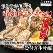 北海道寿都産 殻付寿かきLサイズ20個 生牡蠣