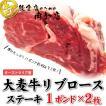 厚切りステーキ 1ポンド リブロース  約450g×2枚 バーベキュー ステーキ 焼き肉 焼肉 大麦牛