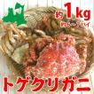 トゲクリガニ 中サイズ(メス)約1kg6~7ハイ(塩...