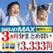 カルシウム サプリ アルギニン 子供 キッズ サプリメント ジュニア プロテイン サプリ 粉末 パウダー SEUP MAX x3個セット 《送料無料》