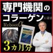 サプリメント ノコギリヤシ 亜鉛 サプリメント  ケラチン サプリ リブートα 3個セット 《送料無料》