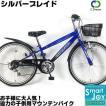 C.Dream/PROGEAR シルバーブレイド 22インチ 6段変速付 子供自転車 男の子に大人気のデザインの子供用MTB 激安価格 ジュニアマウンテン CTB26