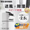 除湿機  乾燥機 サーキュレーター 衣類乾燥除湿機 デシカント式 DDD-50E アイリスオーヤマ