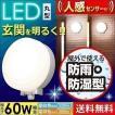 玄関照明 玄関灯 外灯 60W相当 LED LEDポーチ灯 玄関ライト 人感センサー付 丸型 アイリスオーヤマ