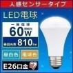 LED電球 E26 人感センサー付 60W形相当 昼白色 LDR8N-H-S6・電球色 LDR8L-H-S6 ECOHiLUX アイリスオーヤマ  一人暮らし おしゃれ 新生活