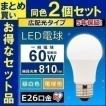 LED電球 E26 60W 広配光タイプ  LDA7D-G-6T5・LDA7N-G-6T5・LDA8L-G-6T5 アイリスオーヤマ 2個セット