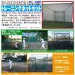 少年軟式野球用バッティングネット TN-2128 梱包サイズ250