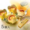 九州 お土産 唐芋レアケーキ フェスティバロ ラブリー 5個入  冷凍