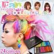 ヘアカラーチョーク 24色 髪用カラーチョーク ワンデイカラー 送料無料