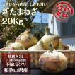 新玉ねぎ たまねぎ 和歌山県産 約20kg 訳あり 送料無料 玉葱 タマネギ