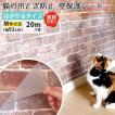 猫 爪とぎ ぺット 犬 うさぎ 賃貸可 原状回復 猫ちゃんの爪とぎ防止 壁保護シート はがせるタイプ Mサイズ(幅92cm) 20m/1本
