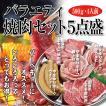 バラエティ焼肉セット5点盛 焼肉 バーベキュー BBQ 国産