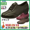 アサヒシューズ 快歩主義 L076K ひもタイプ レディース(女性用・婦人用) 軽量・高齢者に最適な靴
