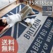 【送料無料】センターラグ 丸洗いok 日本製 床暖 ホットカーペット対応 185×185