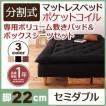 新 移動ラクラク 分割式ポケットコイルマットレスベッド 脚22cm 専用敷きパッドセット セミダブル