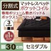 新 移動ラクラク 分割式ポケットコイルマットレスベッド 脚30cm 専用敷きパッドセット セミダブル