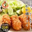 カキフライ 700g(大粒20粒入り)手作り 贈答用 広島県産 かき 牡蠣