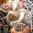 サザエ さざえ 中サイズ 1kg 天然 活 (1粒70〜80g/約13粒)福井県産 BBQ 海鮮 バーベキュー