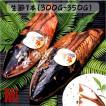 【冷凍商品同梱不可】【常温】 生節 なまりぶし 無添加 1本(300〜350g)中サイズ 伊勢志摩