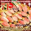 カニ 特大 ズワイガニ 爪 ポーション 生冷凍 ずわい蟹 しゃぶしゃぶ用 7Lサイズ ずわいがに爪 かにしゃぶ 内容量 1kg