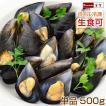ムール貝 広島県産 国産 1パック 500g(15-25粒) 単品販売
