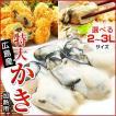 3Lまたは2L 選べる 牡蠣 大粒 カキ 国産 特大 冷凍牡蠣 剥き身 加熱用 広島県産 剥きカキ (総重量 1kg 内容量 850g )