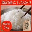 魚沼産こしひかり 無洗米 5kg