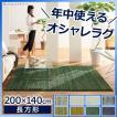 カーペットラグ 絨毯 洗える ミックスカラー 200x140cm 防ダニ 防音 防炎