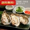 生牡蠣 生がき かき 北海道 厚岸産 殻つきカキ 生食用 Lサイズ(大)20個 ナイフ付き
