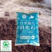 【自然風化貝化石 3kg】 天然カルシウム 根張り・耐病性の強化に 土壌改善 【送料無料】