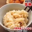 ポイント消化 お米 1kg お試し 千葉県産 コシヒカリ 玄米 再調整済み 平成30年産