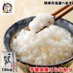 新米 2018 お米 10kg (5kgx2袋) 千葉県産 コシヒカリ 精米方法選択可 ギフト対応