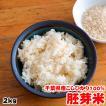 米 お米 2kg 千葉県産 胚芽米 コシヒカリ ラッピング対応不可
