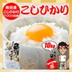 米 お米 10kg (5kgx2袋) 新潟県 魚沼産 こしひかり