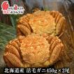 北海道産 活毛ガニ 450g×2尾セット(かに カニ 蟹)お土産 通販