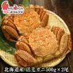 北海道産 活毛ガニ 500g×2尾セット(かに カニ 蟹)お土産 通販