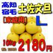 【高知宿毛産】「家庭用」土佐文旦10kgL