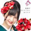 卒業式 袴 髪飾り 赤 かんざし 振袖 成人式 髪飾り 和装 着物 花 髪飾り セット 和柄 房