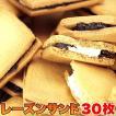 スイーツ レーズンバター 焼き菓子 高級レーズンサンドどっさり30個 訳アリ 訳あり 大容量 バターサンド クッキー 焼菓子 レーズン ラムレーズン